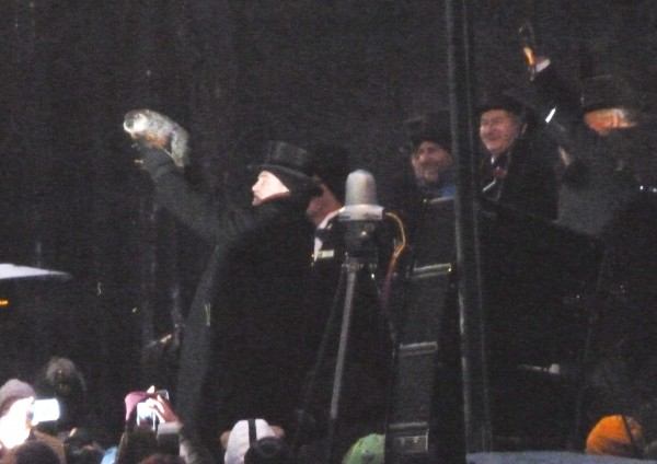 Close up of Punxsutawney Phil 2-2-2013