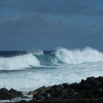 Pacific Ocean Wave in Hawai'i