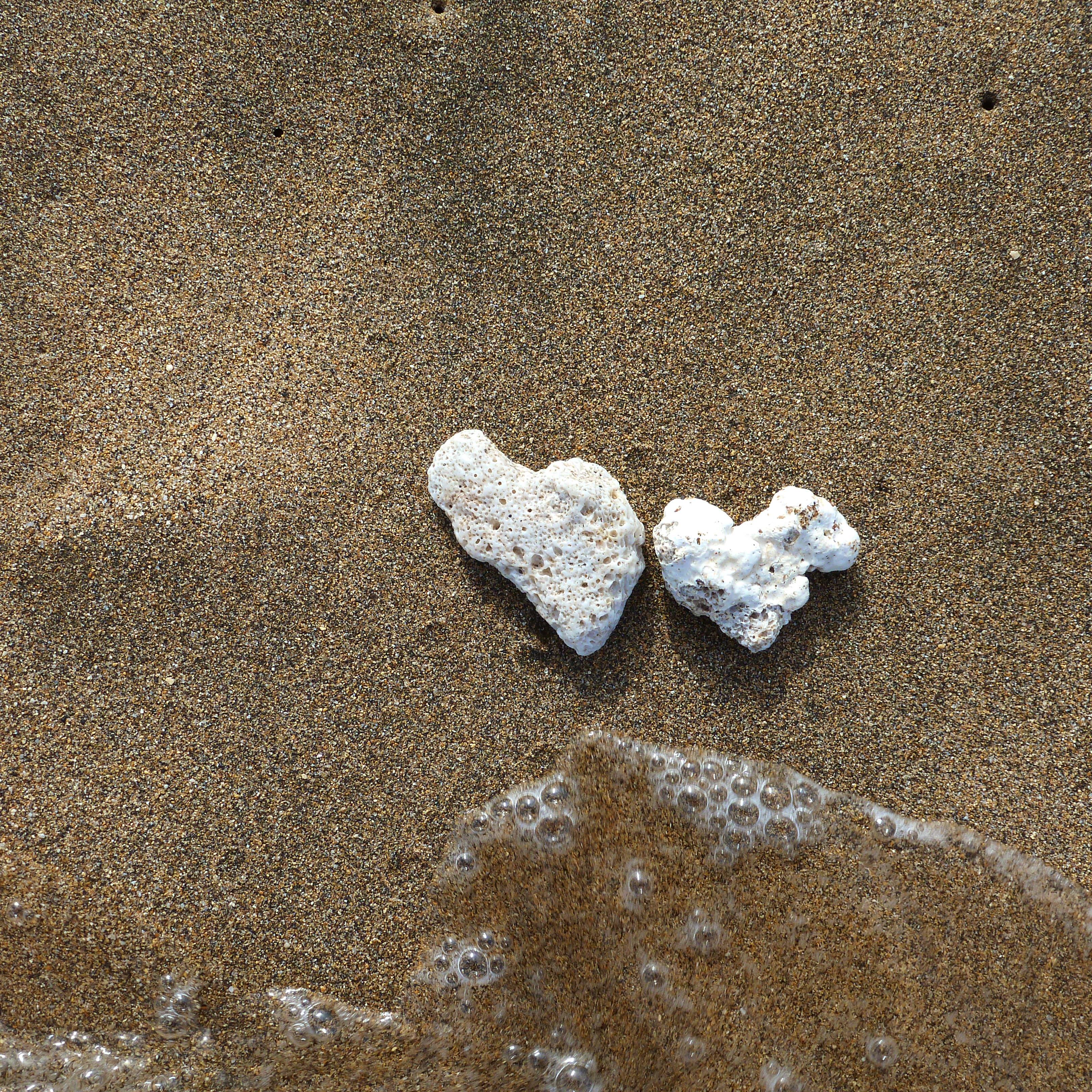 Coral Rocks in Love