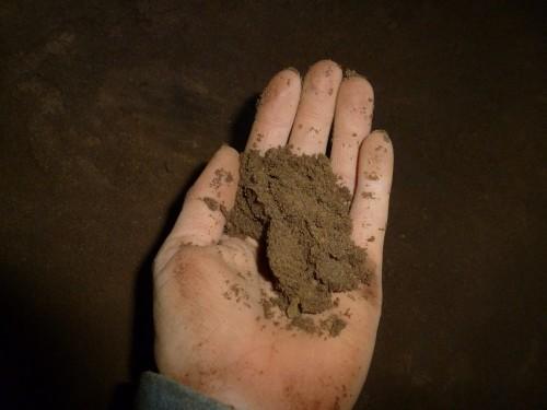 Quartz Sand in Hand